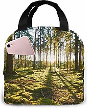 Nature Forest Waterfall Painting Lunch Bag