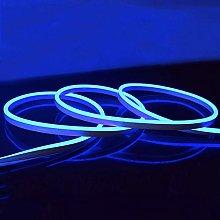 Neon LED Light 5M Blue LED Flexible Strip Light DC
