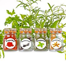 New–50Washable Plastic Herb and Spice Jar