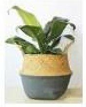 Newchic Flower Basket Storage Holder Plant Pot