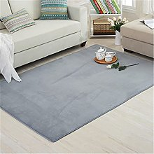 Newest Coral Velvet Rug with Short Hair Misty Gray