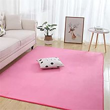 Newest Coral Velvet Rug with Short Hair Tall Pink