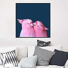 NFXOC Canvas Print Australia Bird Photography