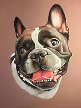 NHJC Paintings on Canvas,French dog,Canvas Wall
