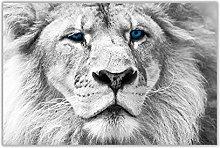 NOBRAND Canvas Wall Art Print White Lion Blue Eyes