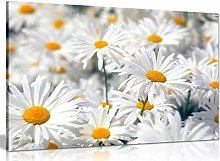 NOBRAND Picture On Canvas Abstract Floral Daisy