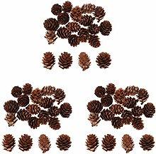 non-brand 60Pcs Natural Pinecones Pine Cones