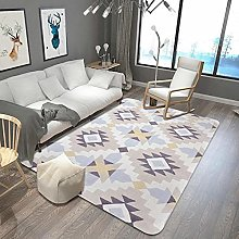 Nordic Style Large Parlor Carpets Crystal Fleece