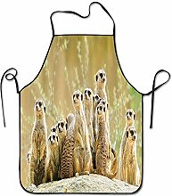Not Applicable Meerkat Many Chef Apron BBQ Grill