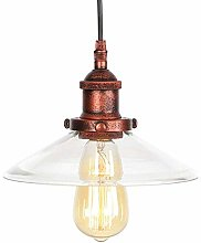 NZDY Hanging Clear Glass Shade Pendant Lamp