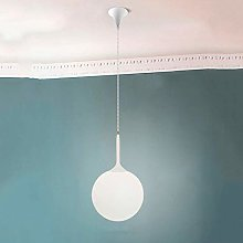 NZDY Modern Ceiling Pendant Lighting Fixture White
