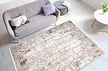 One Couture Rug Modern with Fringes Used Look