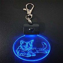 Only 1 Piece Sleeping Cat 3D Acrylic Night Light