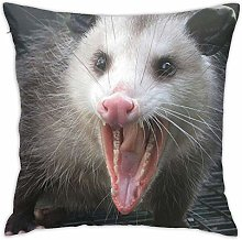 Opossum Possum Hidden Zipper Home Sofa Decorative