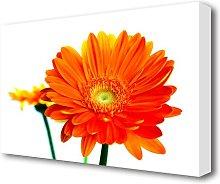 Orange Flames Flowers Canvas Print Wall Art East