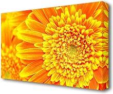 Orange Yellow Gerbera Face Flowers Canvas Print