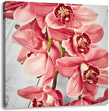 Orchid Blossoms Photograpic Print on Canvas East