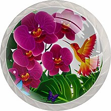 Orchid with Bird Butterflies Decorative Cabinet