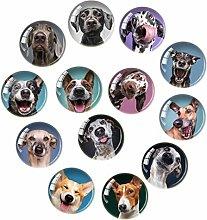 OSALADI 20pcs Refrigerator Magnets Dog Pattern