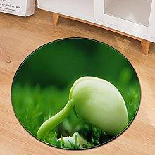 Oukeep Green Round Carpet Non-Slip Wear-Resistant