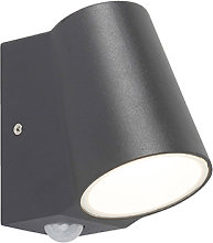 Outdoor lamp anthracite with motion sensor incl.
