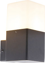 Outdoor wall lamp black with opal white shade IP44