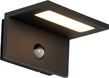 Outdoor wall lamp gray incl. LED IP54 motion
