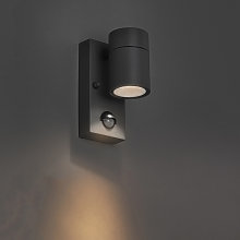 Outdoor Wall Lamp with Motion Sensor Anthracite