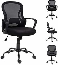 Outwin Ergonomic Office Chair with Torsion Control