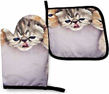Oven Mitts And Pot Holders Sets, Orange Cats