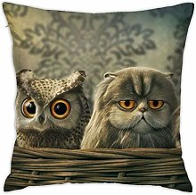 Owl Baby Pillow Cover Square Pillowcase Home Sofa