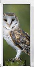 Owl Door Sticker East Urban Home
