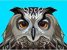 Owl Illustration On Blue Large Wall Art Print