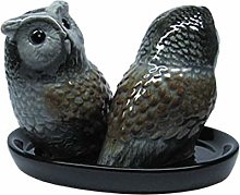 Owl Salt and Pepper Shakers Set Ceramic Handmade