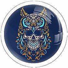 Owl with Skull 4PCS Drawer Knob Pull Handle