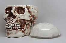 Pacific Trading Ceramic Skull Cookie Jar