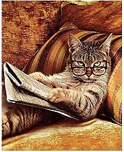 Paint by Numbers Cat on The Sofa Reading a Book