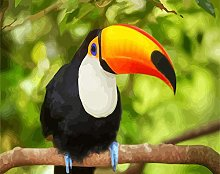 Paint by Numbers Kits Toucan Acrylic Painting Kit