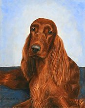 Paint Number Kits Irish Setter Dog Paint by