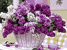 Painting by Numbers, Purple Flowers Basket for