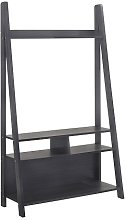 Paltrow Entertainment Unit In Black With Ladder