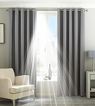 Paoletti Two Curtain Panels, Polyester, Silver, 66