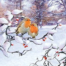 Paper Napkins Christmas Robins On Branch Lunch