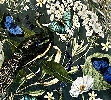 Peacock Butterflies Birds Botanical Greenery