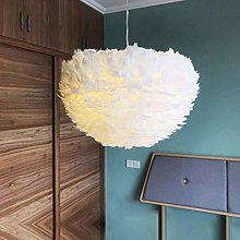 Pendant Light Feather Suspended Hanging Lamp Shade