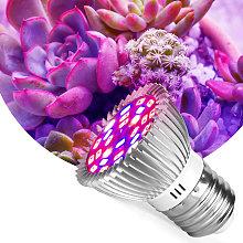 Perle Raregb - Led Grow Light Bulb Full Spectrum