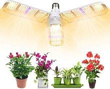 Perle Raregb - Plant Light, Plant Lighting,