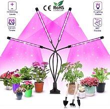 Perle Raregb - Plant Lighting, Plant Lights, Plant