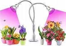 Perle Raregb - Planting Light Gardening Light