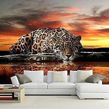 Personality Home Decoration Wallpaper Photo